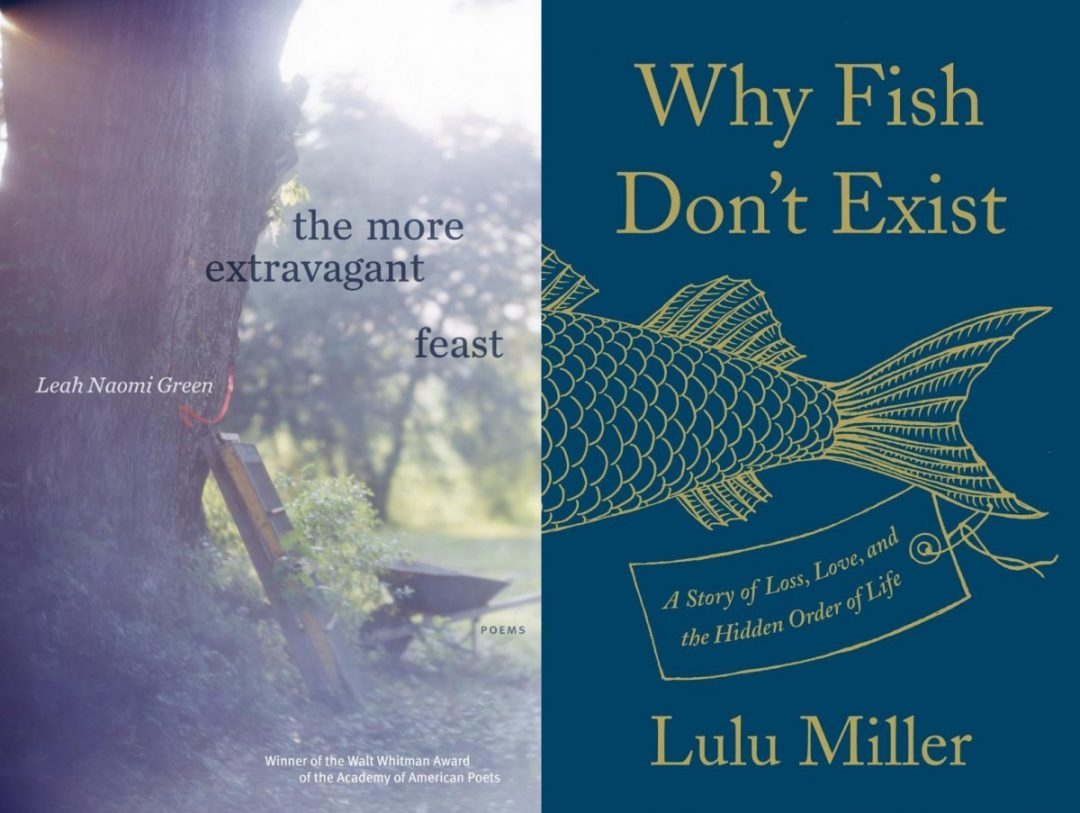 Book covers: Why Fish Don't Exist, The More Extravagant Feast